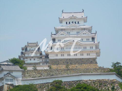 Nara e Himeji: cosa vedere in un solo giorno